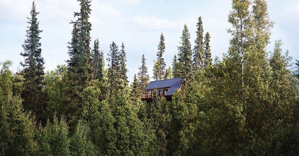 Princess cruises cancellation wilderness lodge