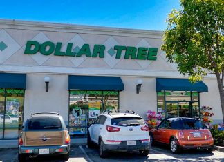 Dollar store shopping for a cruise