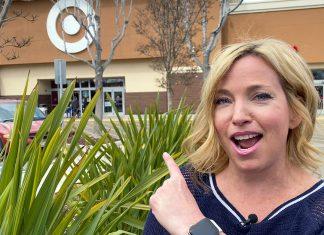 Cruise shopping at Target