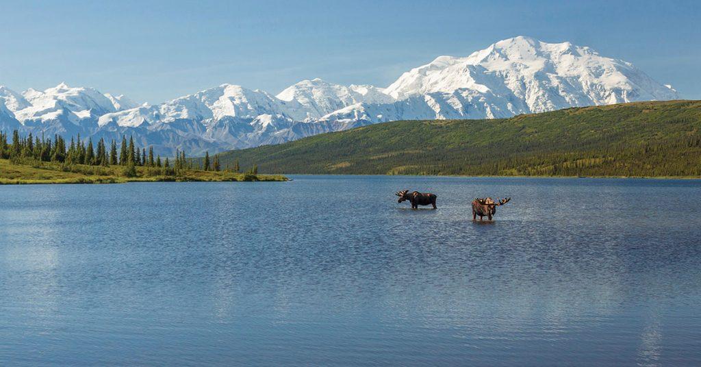 Holland America in 75 Years in Alaska